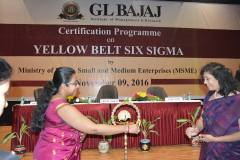 certification-on-yellow-belt-six-sigma-100