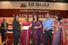 certification-on-yellow-belt-six-sigma-111