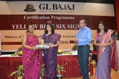 certification-on-yellow-belt-six-sigma-98